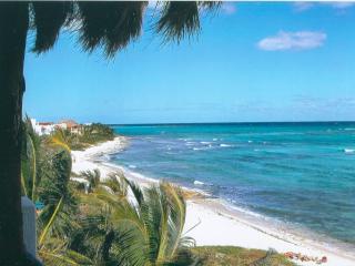 Amazing Beachfront Villa : Ruby Moon - Akumal vacation rentals