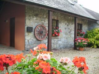 Coolbeg Lodge - Limerick vacation rentals