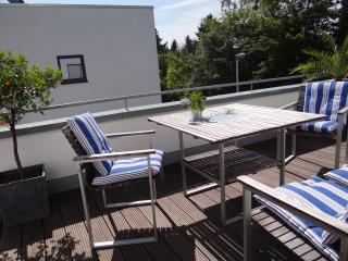 Bright new penthouse apt 103sq - Bonn vacation rentals