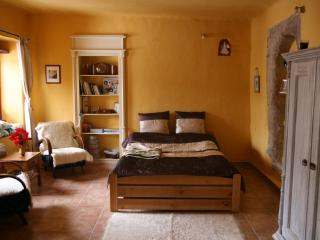 Apartment on the Golden Court - Banska Stiavnica vacation rentals