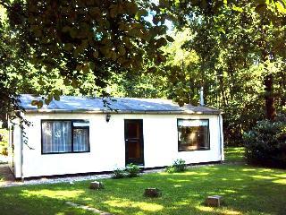 't Boshuuske - Winterswijk vacation rentals
