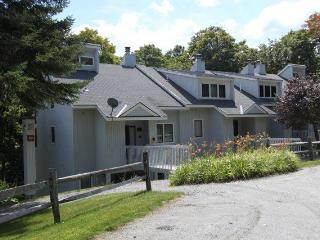 Slopeside-I5 - Stratton and Bromley Ski Areas vacation rentals