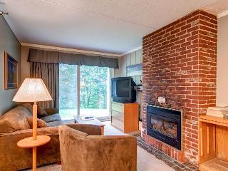 Whiffletree Condominium C2 - Killington vacation rentals