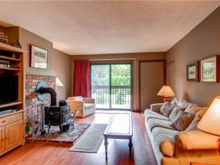 Wintergreen Condominium 209 - Pittsfield vacation rentals