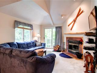 The Woods Resort & Spa-WV10 - Killington vacation rentals