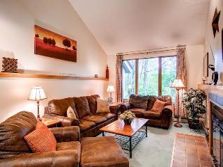 The Woods Resort & Spa Townhouse A8 - Killington vacation rentals