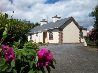 Wild Rose Cottage - Dunkineely vacation rentals