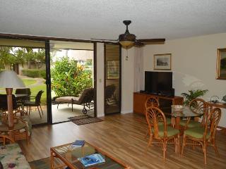 Waikoloa Villas F-101- $79/N - 7N min til 12/15/15 - Waikoloa vacation rentals