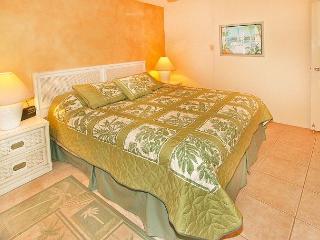 #310 - Ocean View 1 Bedroom/1 Bath unit in Maalaea Bay! - Maalaea vacation rentals