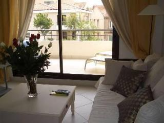 Luxury 3 Bedroom Cannes Apartment, 90 rue d'Antibe - Cote d'Azur- French Riviera vacation rentals