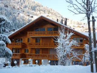 Chalet 'Les Amis' - Champéry vacation rentals