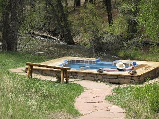 Creekside Hot Springs Cabin - Salida vacation rentals