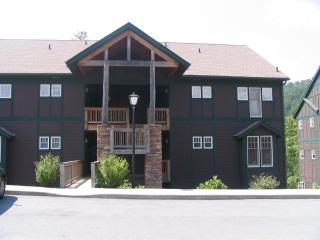$95/nt.Special,2 pls,httb,WiFi,no stairs,privacy, - Boone vacation rentals