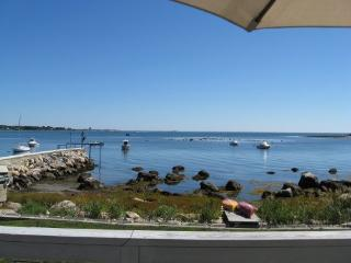 Cottage by the Sea! - Stonington vacation rentals