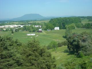 64 - The Pinnacle - Lexington vacation rentals