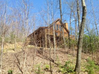 3 bedroom true log cabin complete with bears! - Gatlinburg vacation rentals
