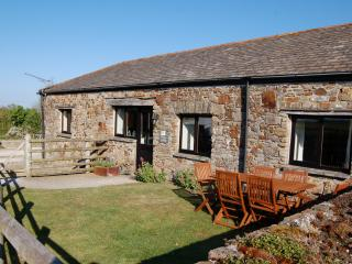 Cottons Cottage - Widemouth Bay vacation rentals