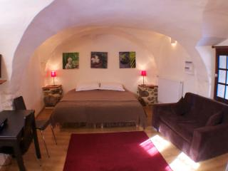 Beautiful cave studio close to Les Deux Alpes and Alpe d'Huez - La Mure vacation rentals