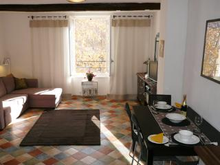 Les Oliviers - Saint-Chinian vacation rentals