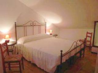 cà borgo vecchio: la rosa rossa apartment - Brusasco vacation rentals