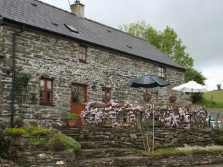Old House Cottage - Rhydlewis vacation rentals