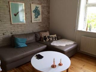 Fine Copenhagen apartment near Oesterfaelled square - Copenhagen vacation rentals