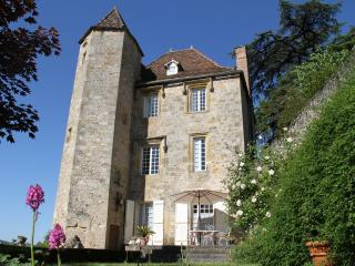 Renaissance Castle with private pool in the LOT, F - Puy-l Eveque vacation rentals