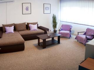 Sunny apartment in Split - Split vacation rentals