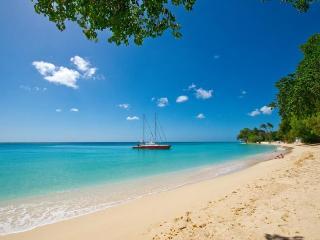 Luxury 9 bedroom Barbados villa.  Luxurious Tropical Escape! - Antigua and Barbuda vacation rentals