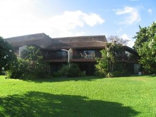 3,4,5,6 or7  bedrms,  Across from beach, - Kihei vacation rentals