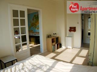 Apartment near the center of Copenhagen - Denmark vacation rentals