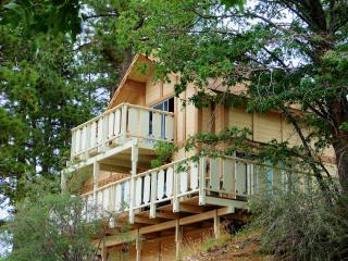 Ski Bear Chalet - Bear Mountain - Big Bear Lake vacation rentals