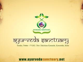 Authentic Ayurveda Resort in Healthy Environment - Karnataka vacation rentals