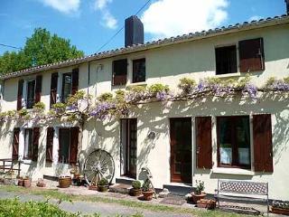 Les Glycines - Vernoux-en-Gatine vacation rentals