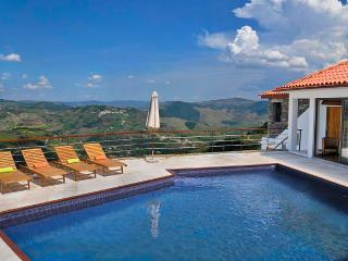 Luxury Holiday Villa Sleeps 6-9 Douro Valley - Lamego vacation rentals