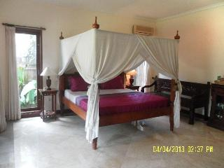Luxury Private Room Pool WIFI, Quiet Garden, Sanur - Sanur vacation rentals