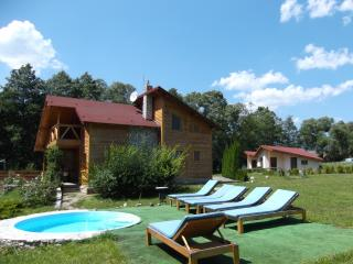 Valisoara Holiday House in Transylvania, Romania - Valisoara vacation rentals