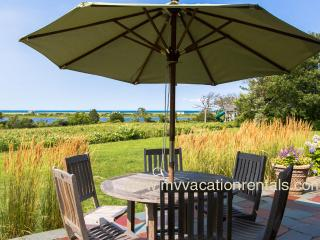 DEKKJ -  Cow Bay, Pristine  Private Association Beach,  Expansive Waterviews,  Kayaks Provided - Edgartown vacation rentals