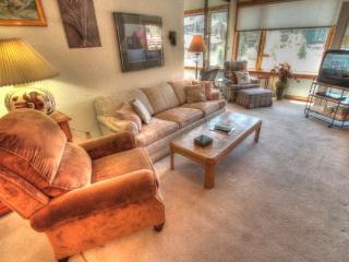 SH504 Summit House 3BR 2BA - Center Village - Copper Mountain vacation rentals