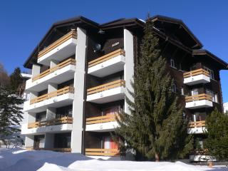 Saas-Fee Valais Nices apartments for 2 peoples - Valais vacation rentals