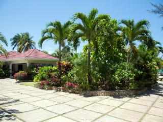Stone Harbour - Ocho Rios vacation rentals