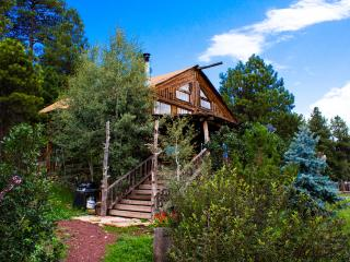 Log Cabin Home Vacation in the tall  Pine Trees w - Flagstaff vacation rentals