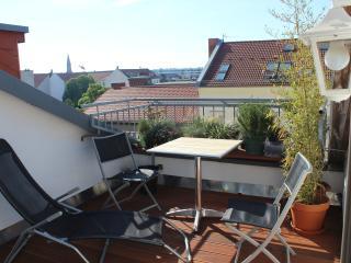Charming roof terrasse in Berlin Mitte + bikes - Brandenburg vacation rentals