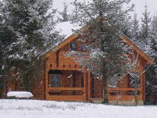 Log Cabin Rental - Ballyconnell Co. Cavan, Ireland - Ballyconnell vacation rentals