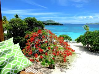 'Billion$ View' New Deluxe 2FL Beachfront Villa - Saint Thomas vacation rentals