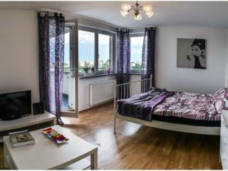 Skyfall Apartment - Krakow vacation rentals