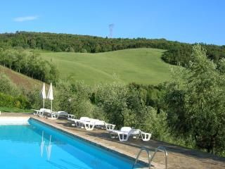 Organic farm tucked away in the Tuscan hills - Montaione vacation rentals