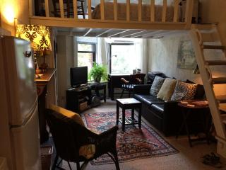 Cozy efficiency overlooking  the most beautiful street in the Back Bay - Boston vacation rentals