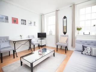 Westminster Apartment walk to Big Ben & London Eye - London vacation rentals