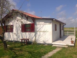 casetta tra mare e fiume - Tarquinia vacation rentals